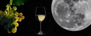 vino-y-luna-1140x450